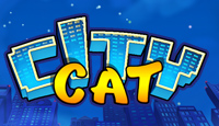 Game City Cat